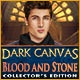 Dark Canvas: Blood and Stone Collector's Edition Game