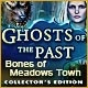 Ghosts of the Past: Bones of Meadows Town Collector's Edition Game