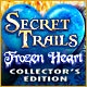 Secret Trails: Frozen Heart Collector's Edition Game
