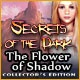 Secrets of the Dark: The Flower of Shadow Collector's Edition Game
