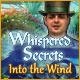 Whispered Secrets: Into the Wind Game