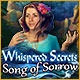 Whispered Secrets: Song of Sorrow Game