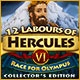 12 Labours of Hercules VI: Race for Olympus Collector's Edition Game