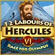 12 Labours of Hercules VI: Race for Olympus Game