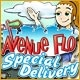 Avenue Flo: Special Delivery Game