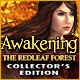 Awakening: The Redleaf Forest Collector's Edition Game