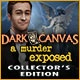Dark Canvas: A Murder Exposed Collector's Edition Game