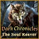 Dark Chronicles: The Soul Reaver Game