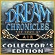 Dream Chronicles: The Book of Air Collector's Edition Game
