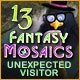 Fantasy Mosaics 13: Unexpected Visitor Game
