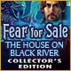 Fear for Sale: The House on Black River Collector's Edition Game