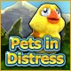 Pets in Distress Game