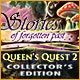 Queen's Quest 2: Stories of Forgotten Past Collector's Edition Game
