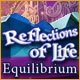 Reflections of Life: Equilibrium Game