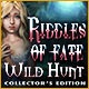 Riddles of Fate: Wild Hunt Collector's Edition Game