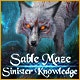 Sable Maze: Sinister Knowledge Game
