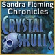 Sandra Fleming Chronicles: The Crystal Skull Game
