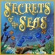 Secrets of the Seas Game