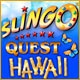 Slingo Quest Hawaii Game