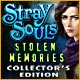 Stray Souls: Stolen Memories Collector's Edition Game