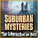 Suburban Mysteries: The Labyrinth of the Past Game