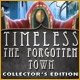 Timeless: The Forgotten Town Collector's Edition Game