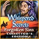 Whispered Secrets: Forgotten Sins Collector's Edition Game