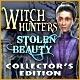 Witch Hunters: Stolen Beauty Collector`s Edition Game